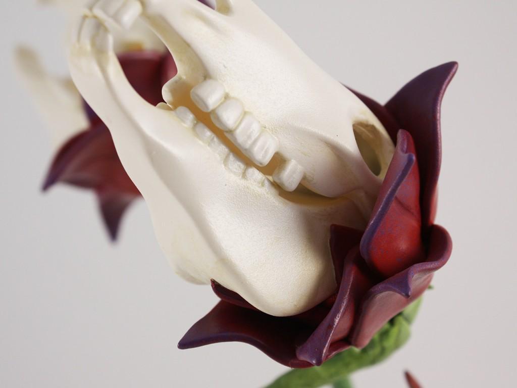Zebra Skull Flowers